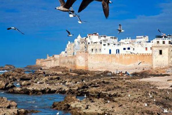 الملتقى الوطني الأول للزاويا القادرية بالمغرب يومي ثاني وثالث مارس المقبل بالصويرة