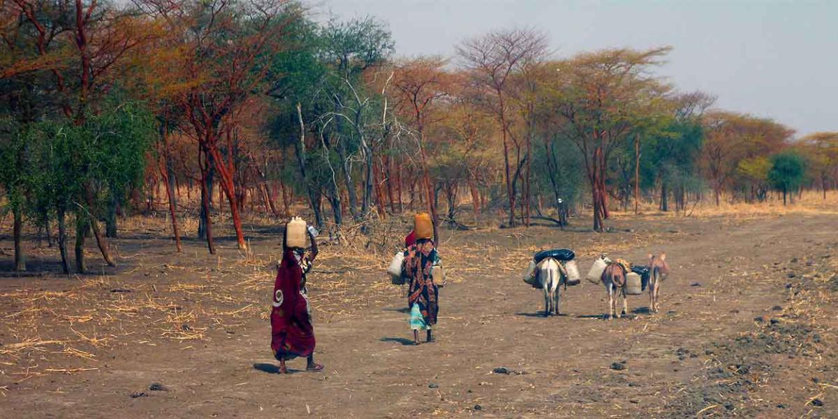 Vague de violence au Soudan du Sud après l'appel à débarrasser la « région musulmane » des chrétiens