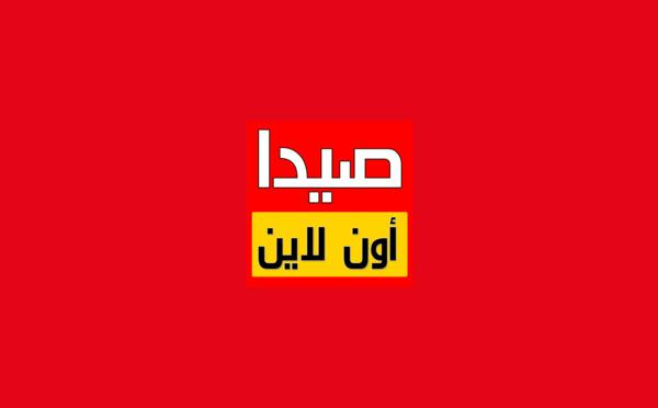 SaidaOnline, a famous news app made in Lebanon