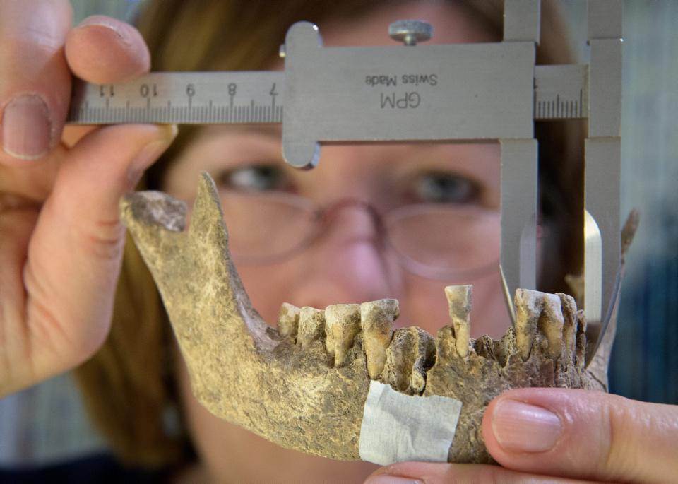 """[Focus] - Archéologie : découverte de la """"dame de Bietikow"""", âgée de plus de 5.000 ans !"""
