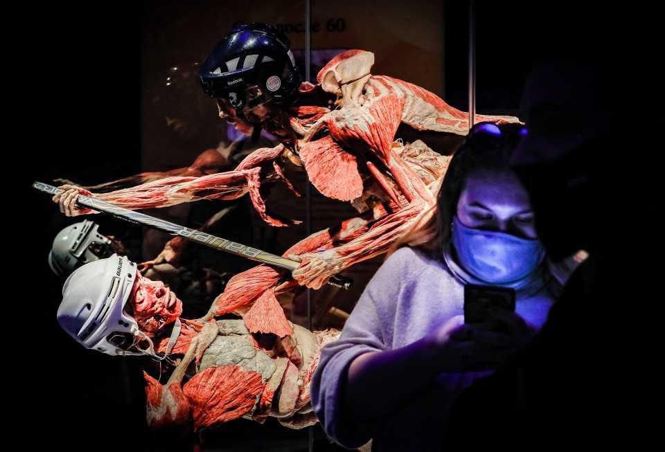 [Focus] - Découvrez les photos hallucinantes de l'expo Body Worlds à Moscou !
