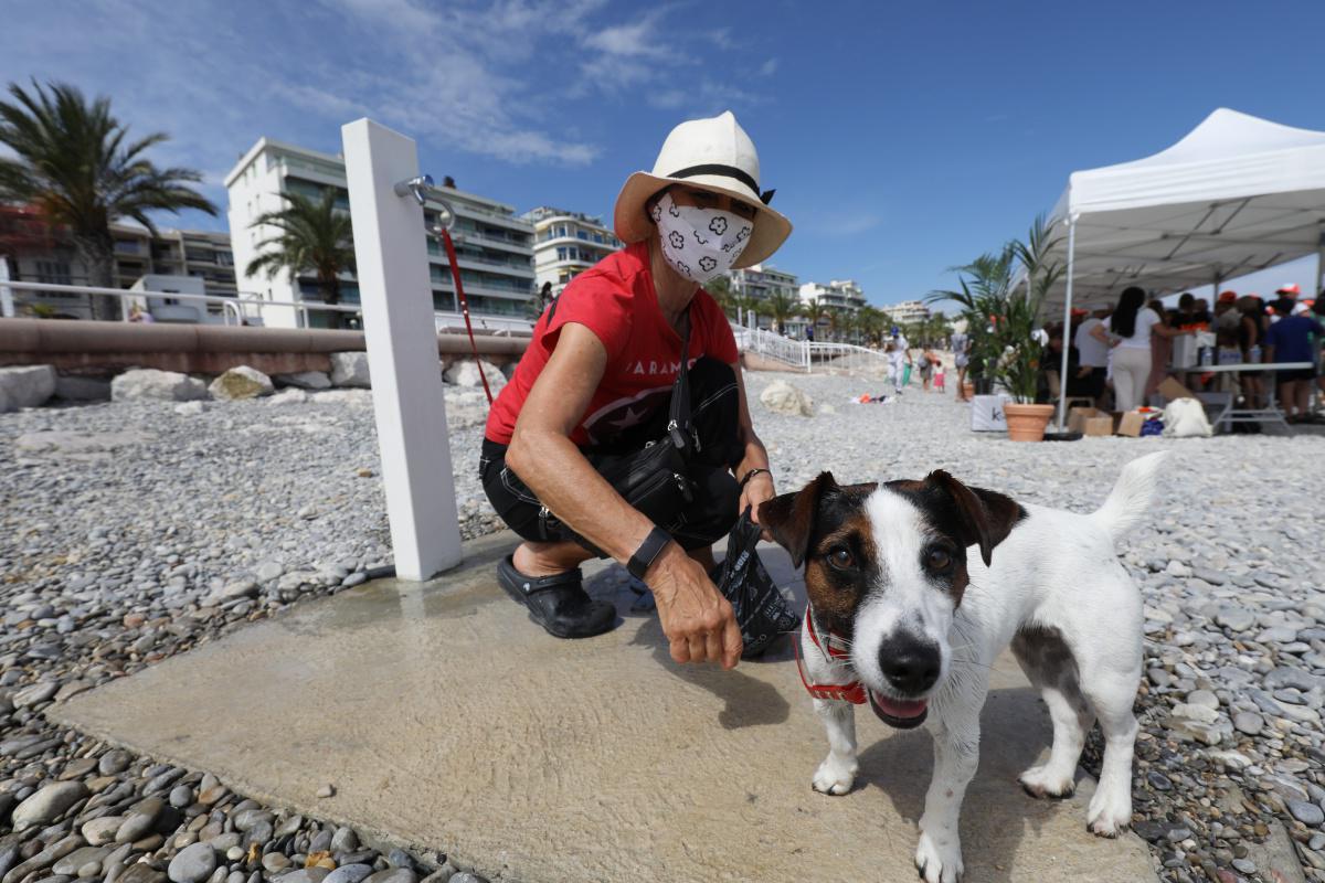 [Focus] En images : une plage pour chiens à Nice !