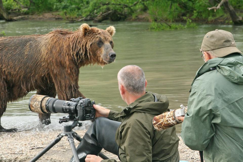 [Focus] - INSOLITE - Animaux pots de colle, le bonheur des photographes animaliers !
