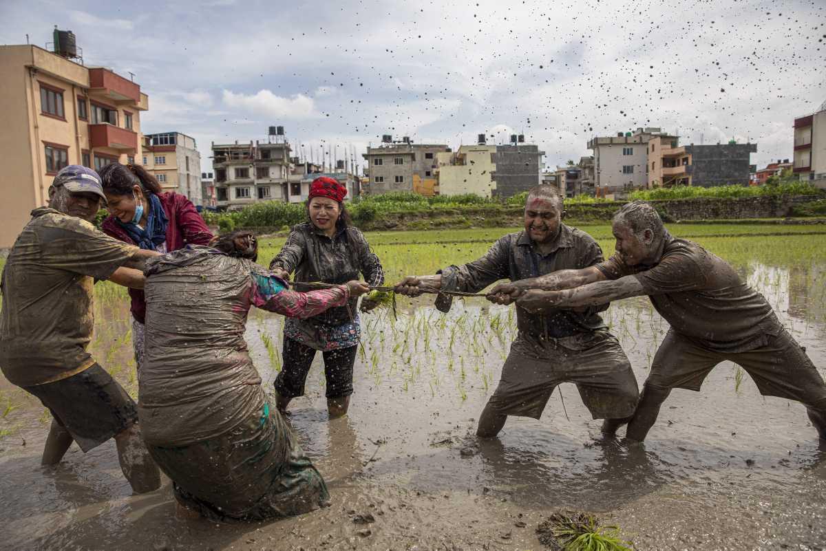 [Focus] - Népal : Asar Pandra célébrée malgré la nouvelle vague de Covid