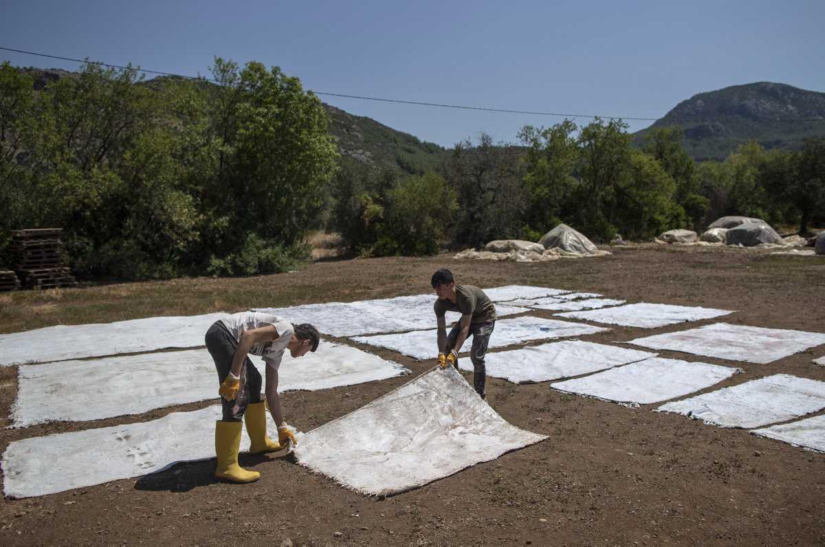 [Focus] - Les tapis colorés de Turquie renaissent en été