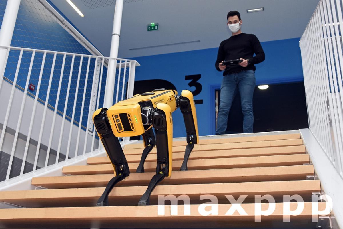 Mines Nancy adopte Scar, le chien robot qui obéit au doigt et à l'œil