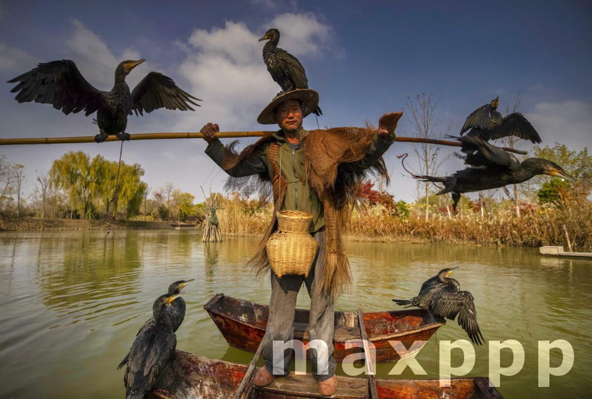Hongze Lake Wetland in China