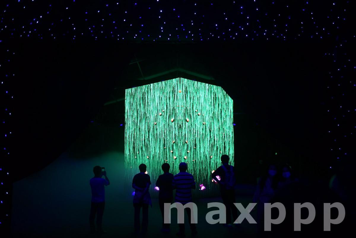 2020 Guangzhou International Light Festival