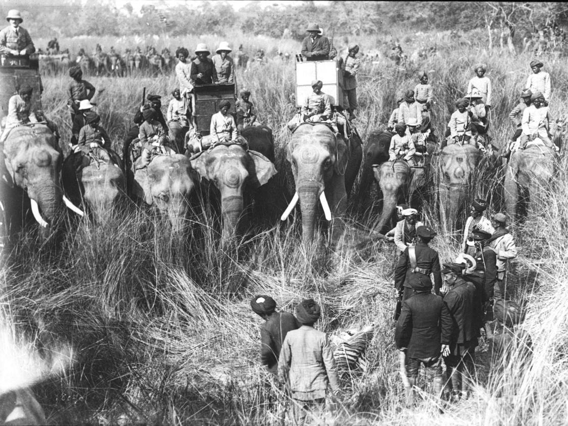 Chasse du roi George V en 1912