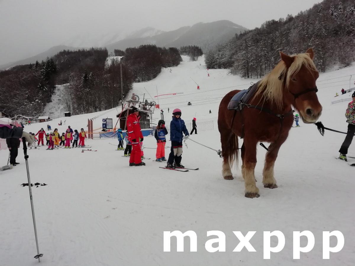 Saint-Léger-les-Mélèzes cours de ski traction animale
