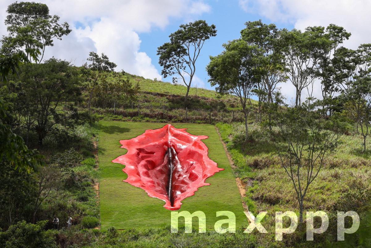 Sculpture of vulva sparks controversy in Brazil