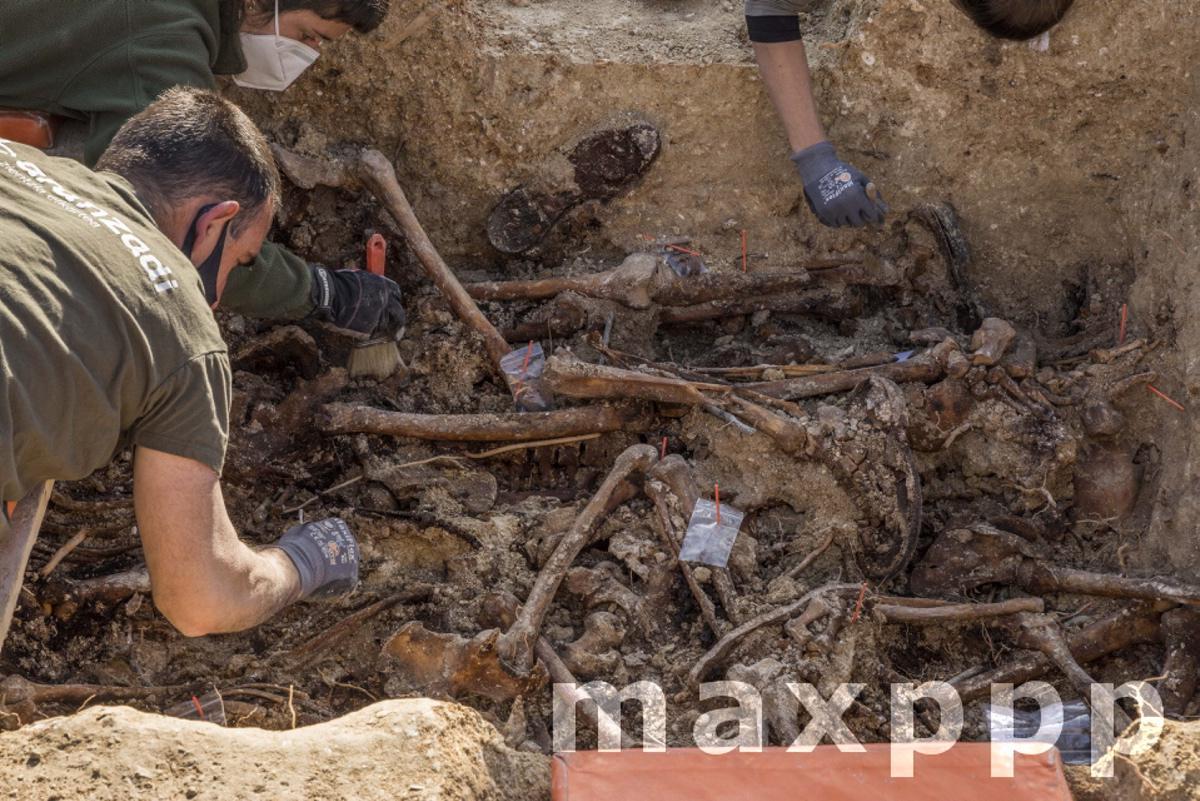 Exhumation Of Franco Victims In Mallorca