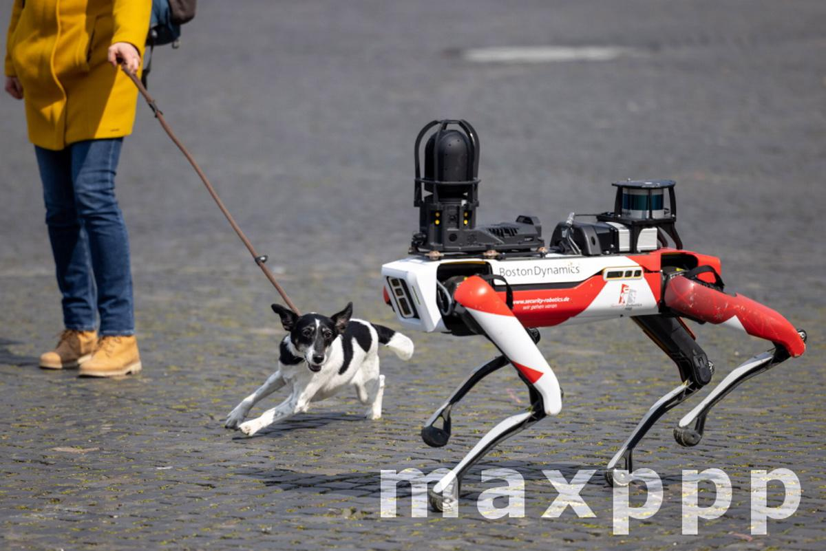 Presentation of a robot of the security service provider Ciborius