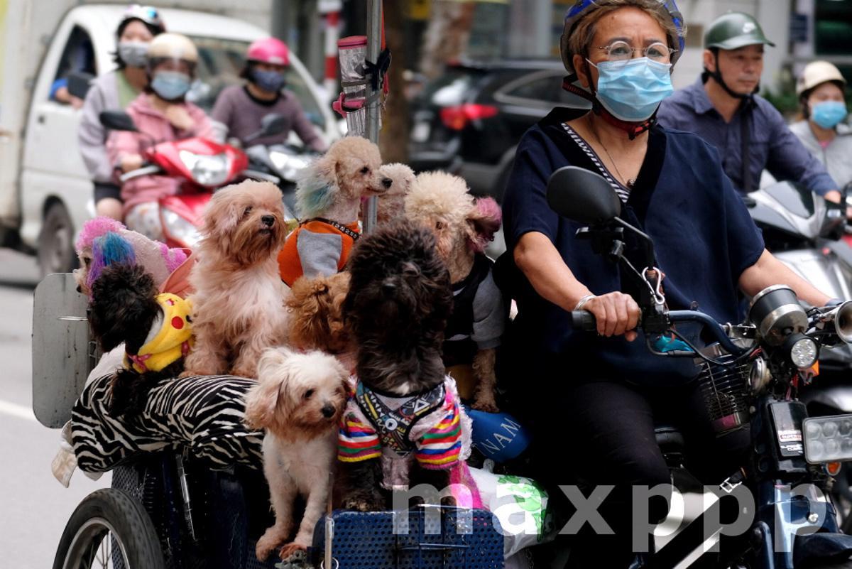 Daily life amid coronavirus pandemic in Vietnam