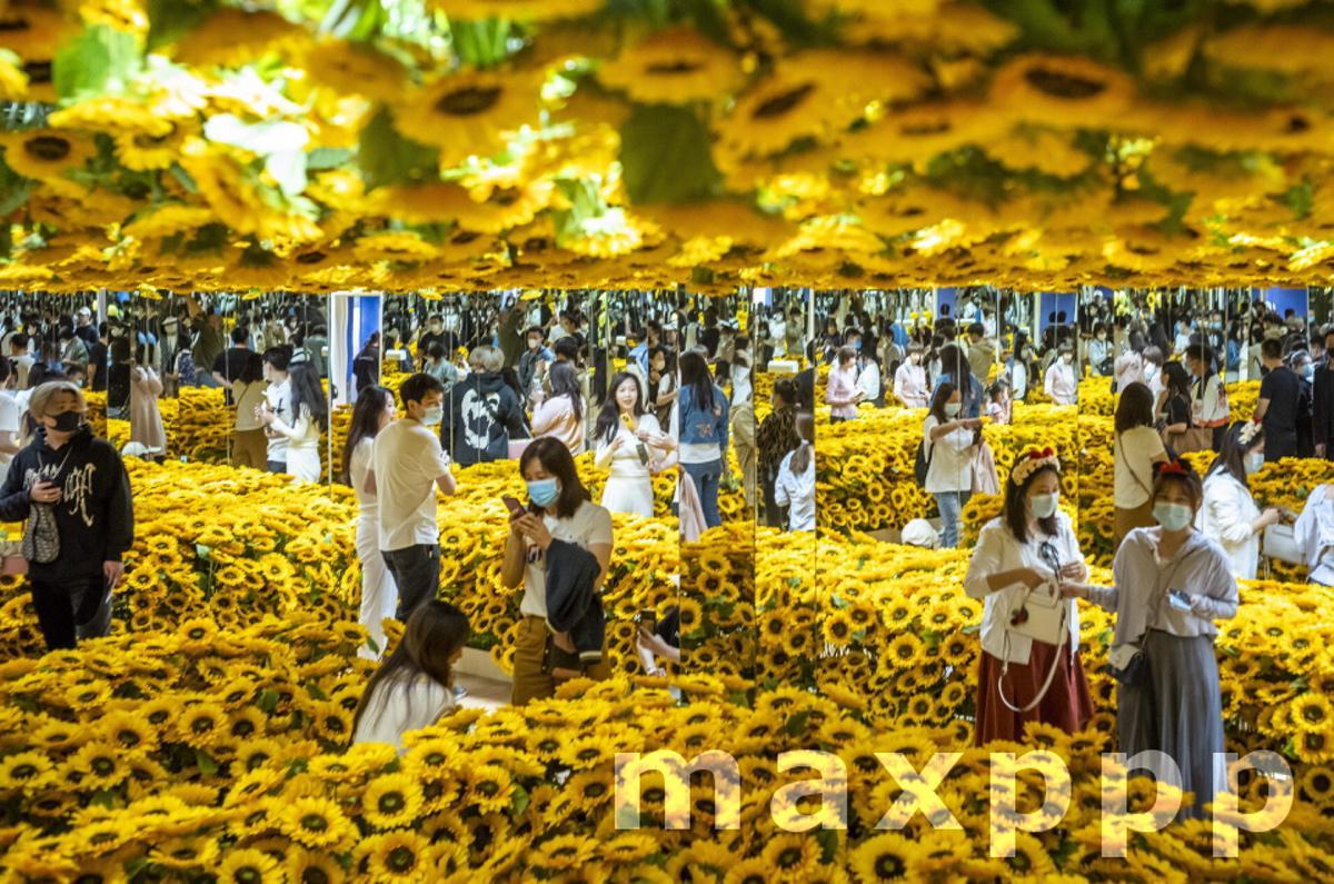 Exhibition Van Gogh alive in Beijing