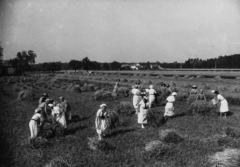 Moissons en 1935