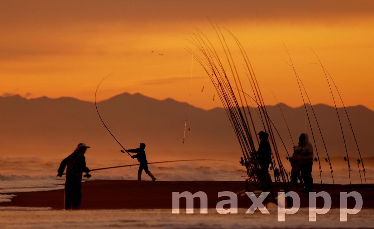 Salmon fishing in Hokkaido