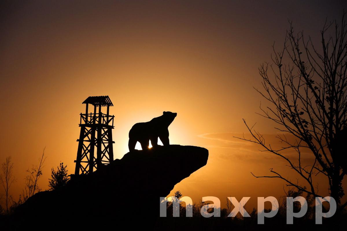 China Heilongjiang Black Bear Reserve