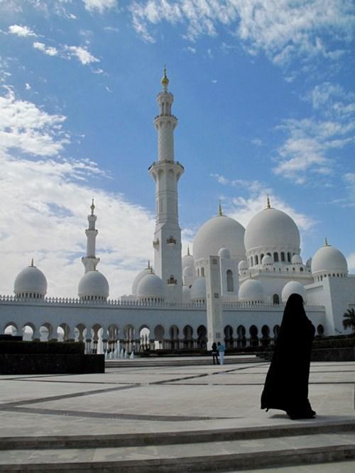 جامع الشيخ زايد بن سلطان رحمه الله