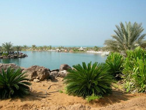 جزيرة اللؤلؤ -Al Lulu Island