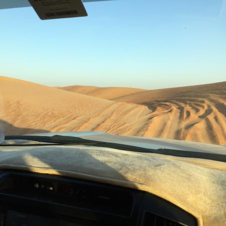 Dubai Desert Conservation Reserve - محمية دبي الصحراوية