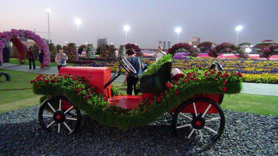 Dubai Miracle Garden حديقة دبي للفراشات