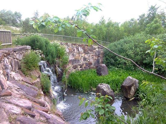 منتزه ووترجيت فوريست بارك Watergate Forest Park
