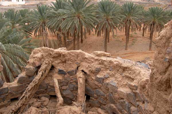 قصر ابن ثعلي العتيبي التاريخي في مركز المحاني
