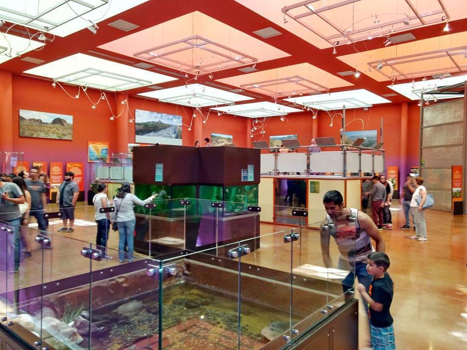 Museo del Desierto Chihuahuense
