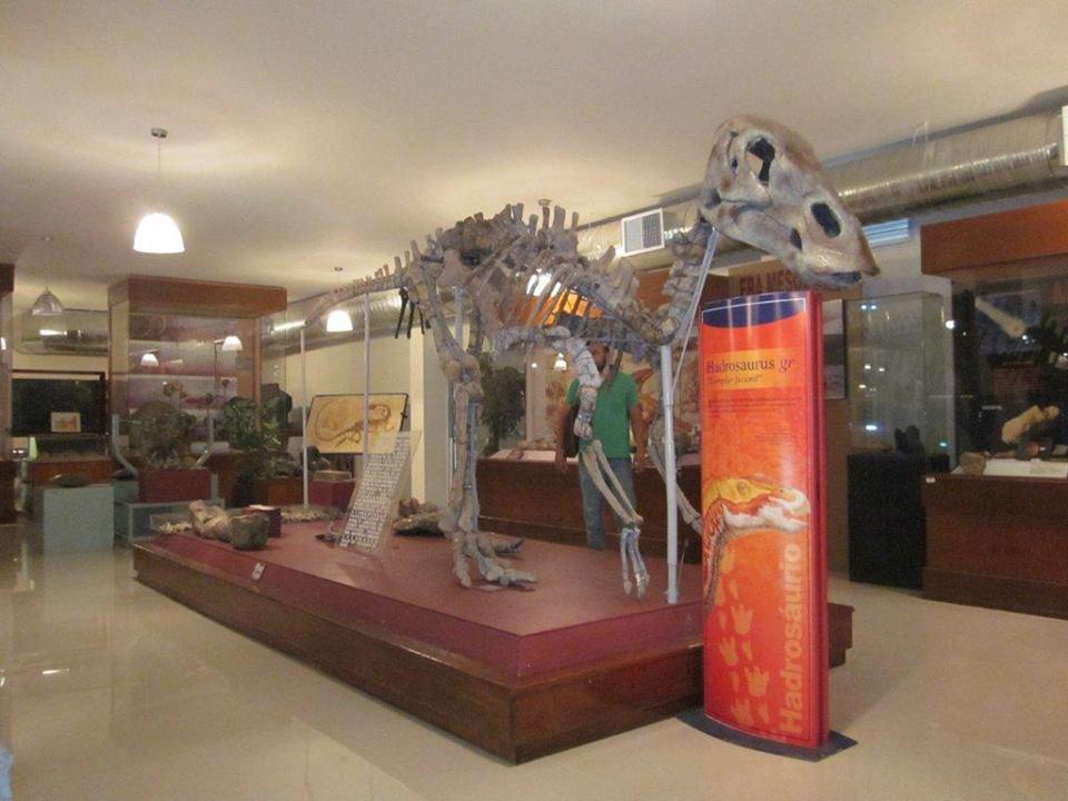 Museo de Paleontología de Delicias