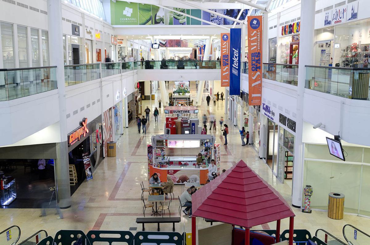 Fashion Mall Chihuahua