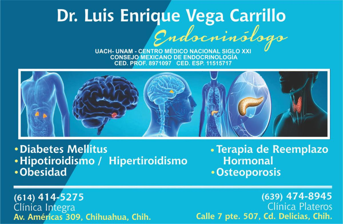 Dr. Luis Enrique Vega Carrillo