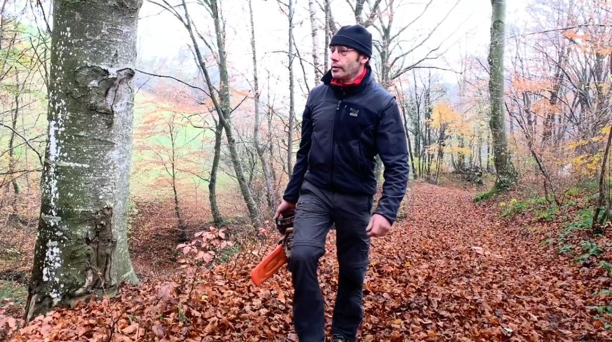 L'uomo degli alberi
