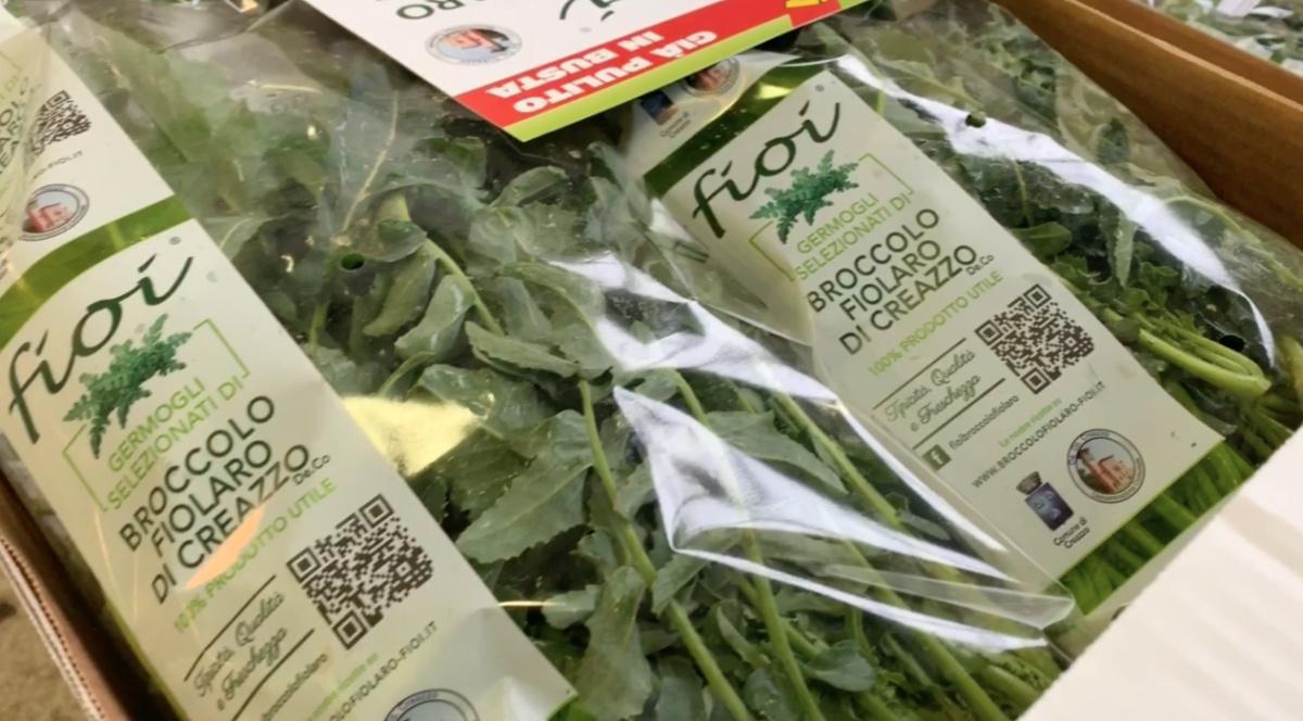 Quanti Figli a Creazzo... grazie al Broccolo!