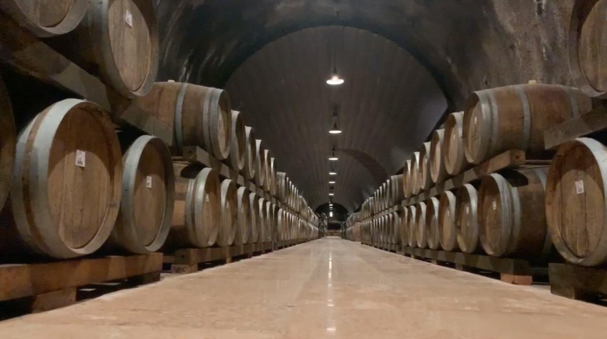 Strada del vino Soave