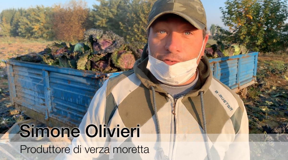 Veronella, dove i campi si tingono di viola