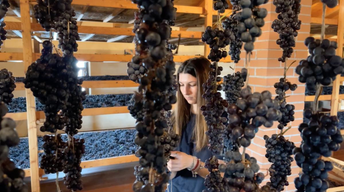 Wine Shop Domìni Veneti Negrar