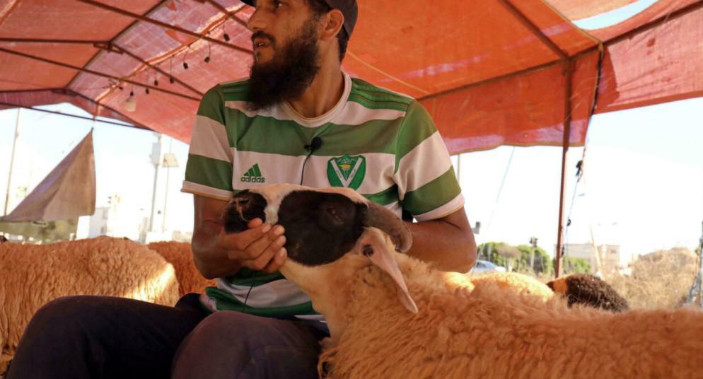 أضاحي العيد تتخطى قدرة الليبيين هذا العام جراء ارتفاع الأسعار