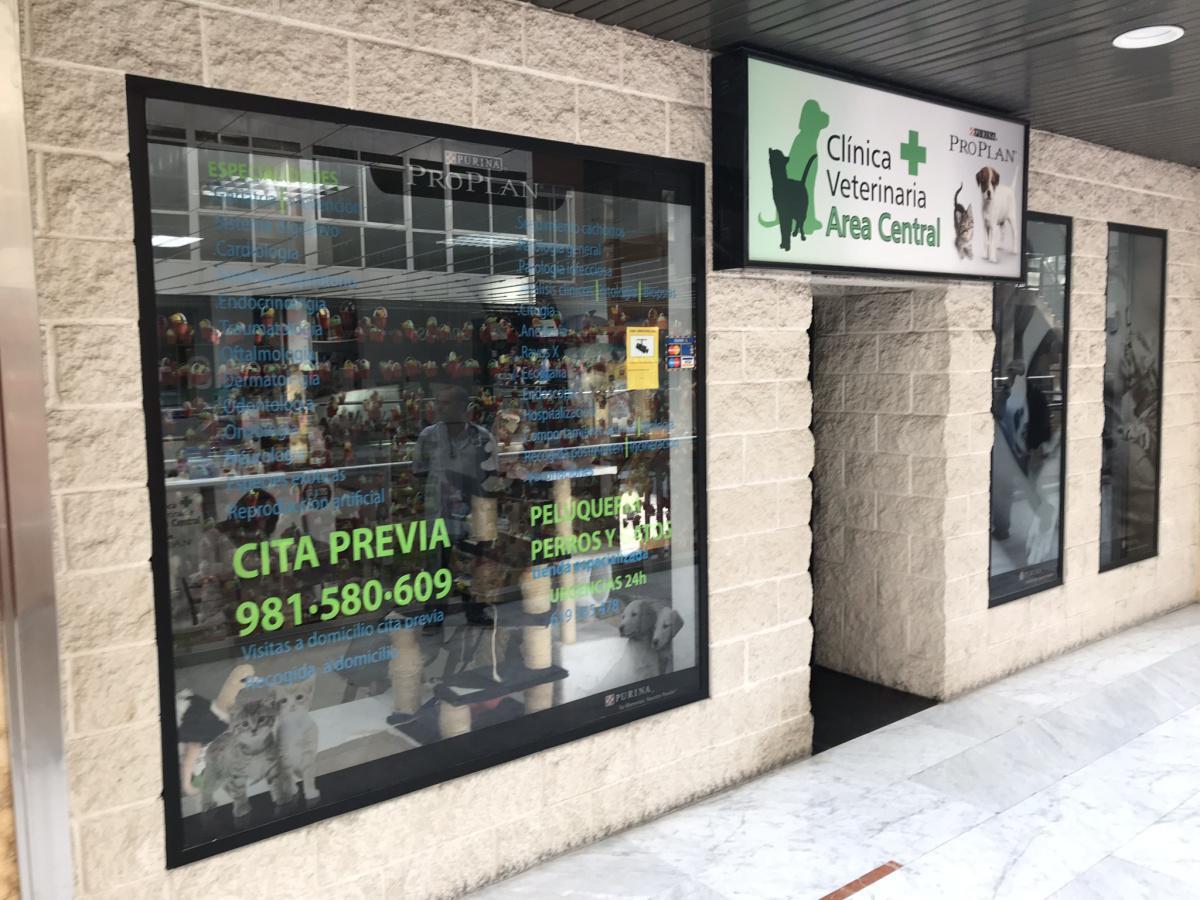 Clinica veterinaria area central